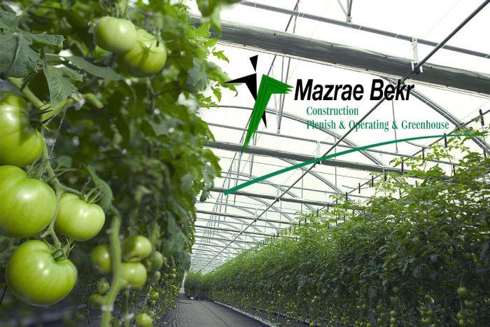 احداث گلخانه شرکت مزرعه بکر سرمایه لازم ساخت گلخانه سرمایه لازم ساخت گلخانه           71 e1517371937971